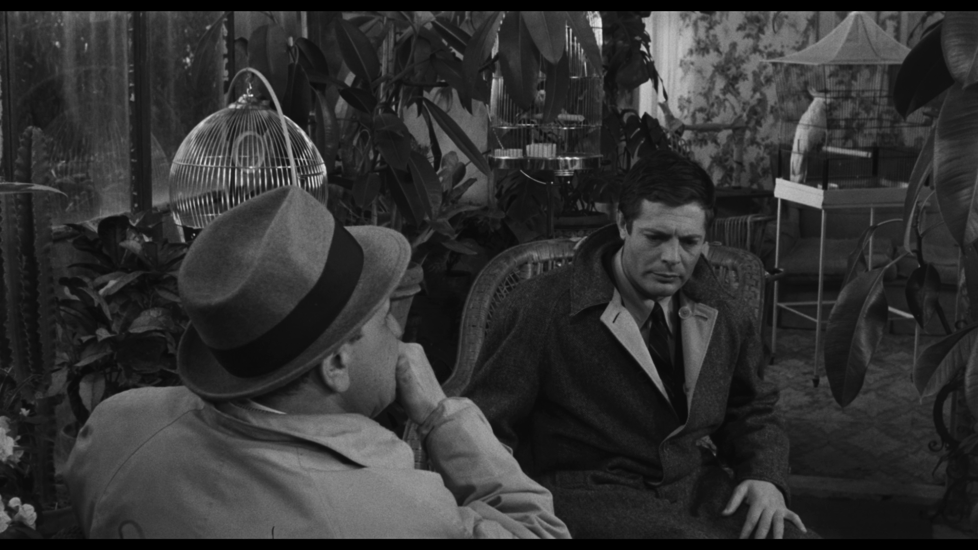 L'Assassino aka The Ladykiller of Rome (1961) (UK Blu-ray ...