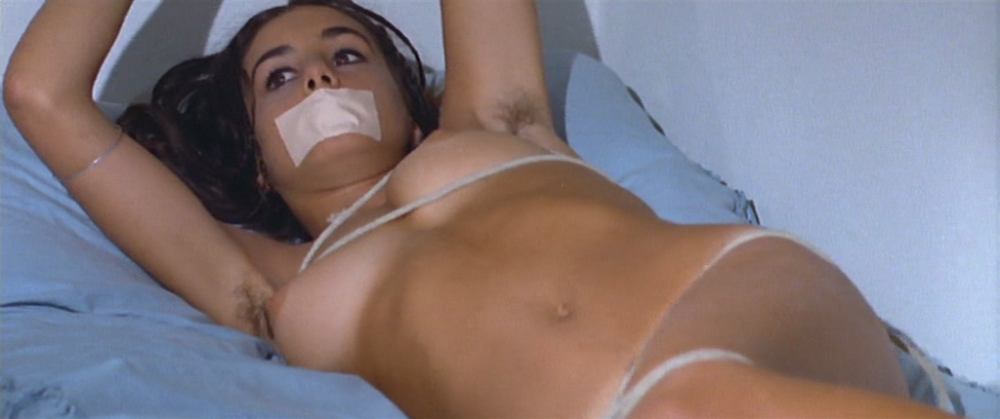 The Bloodstained Lawn (1973)